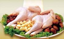 冬天吃鸡好还是鸭好 冬天吃鸡好还是鸭合适