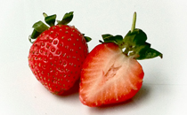 螃蟹和草莓可以一起吃吗 吃了草莓可以吃螃蟹吗