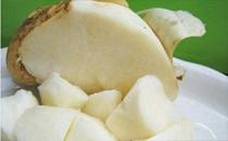 凉薯可以生吃吗 凉薯不能和什么食物一起吃