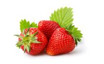 草莓有点烂还能吃吗 草莓烂一点能吃吗
