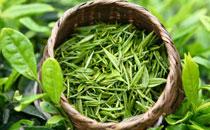 老人经常喝绿茶好不好 老人喝绿茶对身体有很什么坏处