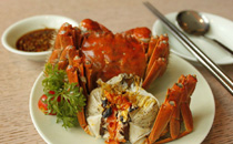 阳澄湖大闸蟹正宗的你肯定买不到 在哪能吃的真正的大闸蟹
