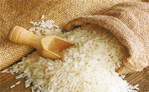 塑料大米是真的吗 塑料大米怎么分辩