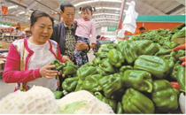 胶带捆绑蔬菜甲醛超标10倍 什么样的蔬菜不能挑选