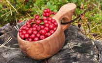 新鲜蔓越莓多少钱一斤2018 新鲜蔓越莓怎么吃